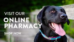 east coast vets online store